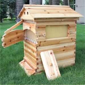 Automatic Honey Free Flow Comb Beehive - Flowhive