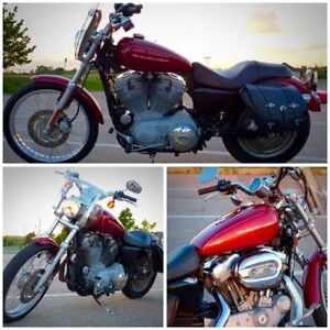 Like NEW *** 2006 883 Custom XL Low Rider