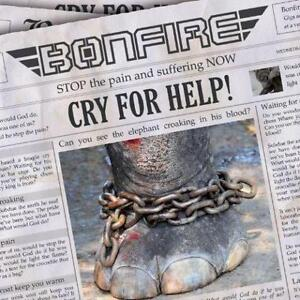 Cry For Help by Bonfire [Music CD]