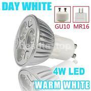 12V 15W Bulb