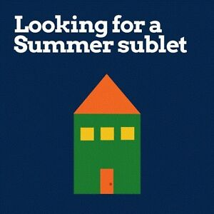 Young Professional Seeking Downtown Accomodations May 1 - Aug 1