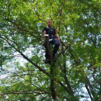 Coupe d`arbres et Émondage . Longueuil .Rive Sud .-438-935-7590.