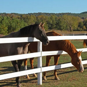 CANADA'S MOST POPULAR HORSE FENCE IS NOW ON SALE