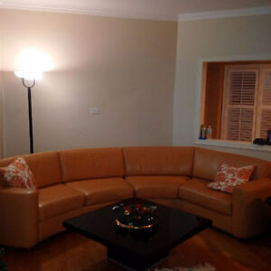 Italian Genuine Leather Modern Sectional Couch / Sofa