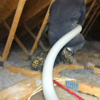 Blow in, spray foam and removal insulation