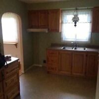 Oak kitchen cabinets, Moen sink and cabinets