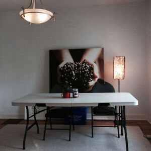 Summer Sublet near Queens, SLC, Downtown room & house