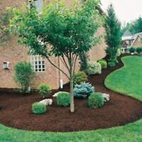 Property Clean Up, Mulch Installation, Tree Cutting and Gardens