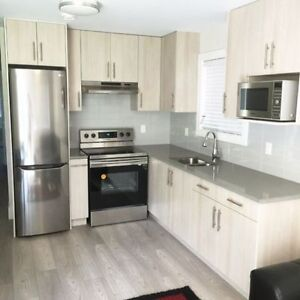 BRAND NEW! 1 BEDROOM SUITE! AVAILABLE NOW!