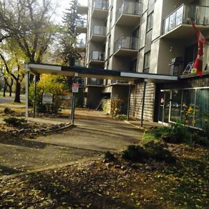 Large upgraded 2 bdrm suite - Old Strathcona