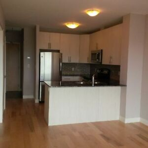 new 1 bed 1 den condo, great viewing, kitchener downtown