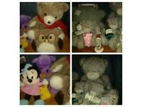 Big Teddy Bear Collection