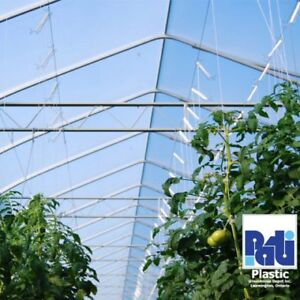 Blue Greenhouse Poly Vinyl Perfect for Berries and Tomatoes