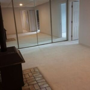 Basement suit , (2 Bed Rooms)119 Ave 54 Street NW
