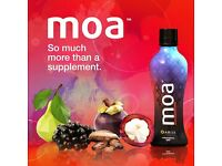 Need a Health Boost With MOA 35 Superfoods in One Big Bottle