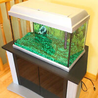 17 Gallon Fish Tank in excellent condition with stand
