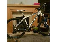 Bourdman mountain bike