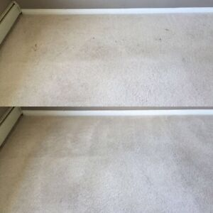 Highest Quality Carpet Cleaning & Restoration Edmonton Edmonton Area image 3