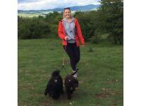 Whistles Dog Walking & Pet Services