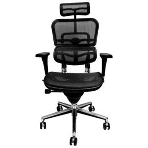 Ergohuman High back chair with mesh seat and back and headrest