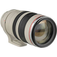 canon 100-400mm L IS USM f4.5-5.6