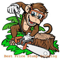 Best Price Stump Grinding - from $60 !!