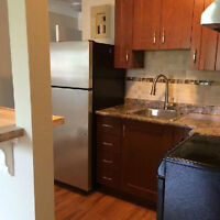 NEWLY RENOVATED 1 BEDROOM ABOVE STORE