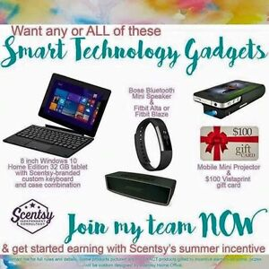 Become an Independent Scentsy Consultant