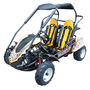 NEW 2017 TTC FX6 6.5hp Off Road Youth Dune Buggy Go Kart