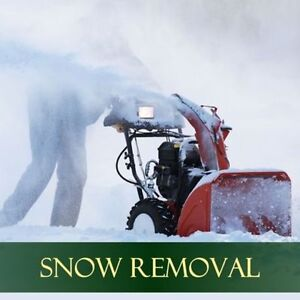 NW Professional Lawn Care, Core Aeration &a Snow Removal ❄️ London Ontario image 2
