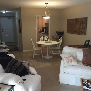 Executive 1 bedroom fully furnished apartment in Old North London Ontario image 2