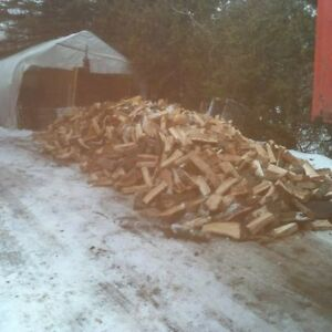 Buy Next Year's Firewood...At Half Price! Peterborough Peterborough Area image 2