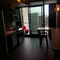 Furnished Studio Condo Downtown, - $1,675/month