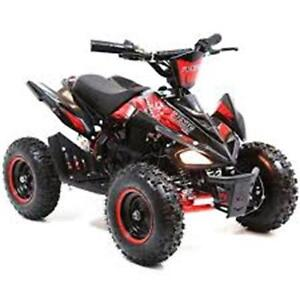 Electric Mini Quad now on for $599.99!