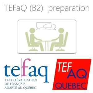 TEFAQ (B2) preparation course given by experienced tutor