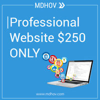 Professional WEBSITE in just $250