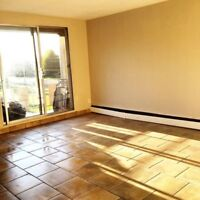 ALL INCLUSIVE!!! One bedroom near LHSC & Wortley