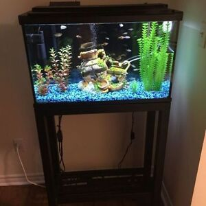 Fish Tank, Stand, Accessories and FISH!!