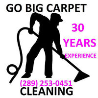 $69 STEAM CLEANS 2 ROOMS AND A HALL OF CARPETING GO BIG STEAM