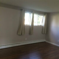 For rent-Large 1 Bedroom Apartment, Lloydminster (AB side)