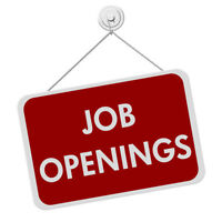 Entry Level Openings
