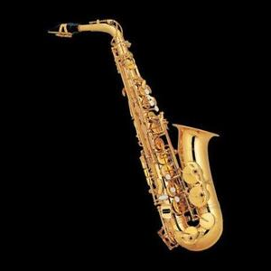Brand new Alto Saxophone from $589.00
