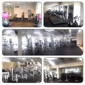 1 only!  sweet Bachelor apartment-- everything in including gym!