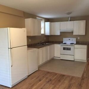 North Surrey $1200 basement suite moving in from Feb. 1st.