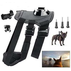 Dog Chest Harness