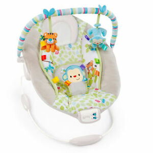 Bright Starts Comfort & Harmony Bouncer