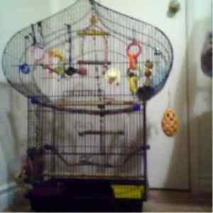 Belle cage avec accessoires 35 pouces par 25 par 14.