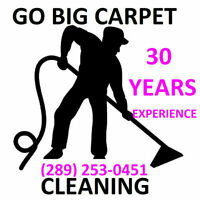 WE STEAM CLEAN CARPETS & FURNITURE FOR 30 YEARS PROFESSIONALLY