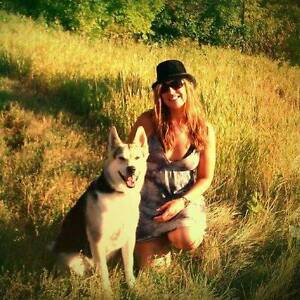 looking to find a place to live in kelowna Dog friendly