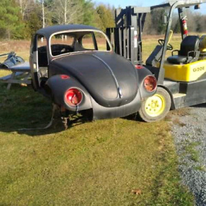 71 Super beetle shell